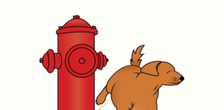 Dog Fire Hydrants for Dogs to Pee On