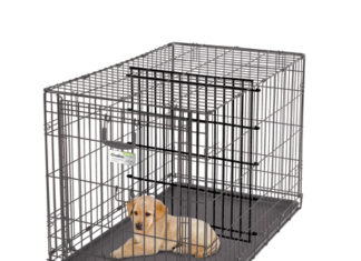 How to Make a Dog Crate Smaller for a Puppy