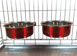 Best Dog Bowls That Attach to Crate
