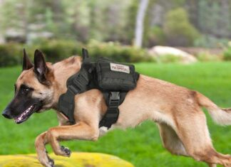 Tactical Dog Harness with Pouches