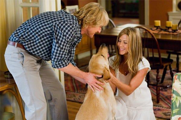 Adopting Vs. Buying a Pet
