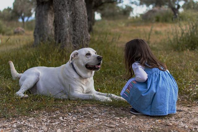 Best Nanny Dog Breeds