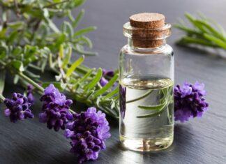 Essential Oils for Dog Gum Disease