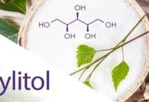 How Long Does Xylitol Stay in a Dog's System?