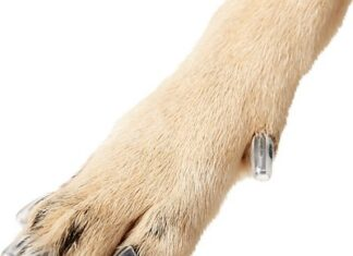 Claw Caps for Dogs