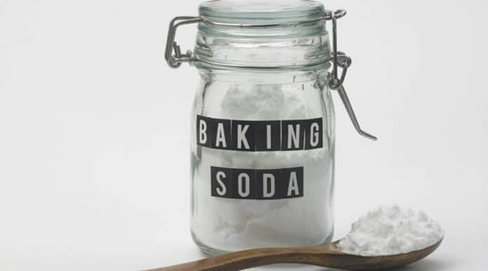 How to Make A Dog Vomit With Baking Soda