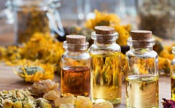 Essential Oils for Dog Seizures